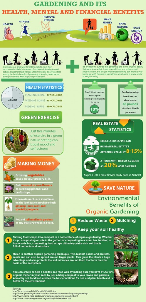 Gardening-And-Its-Benefits-Infographic-infographicsmania